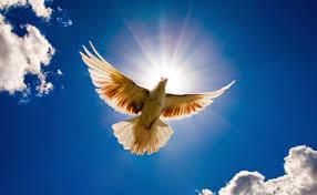 Thượng đế rất công bằng, ngài không cho ai quá nhiều thứ bao giờ.