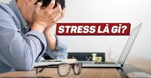 Nguyên nhân Stress thường gặp và cách đập tan chúng!