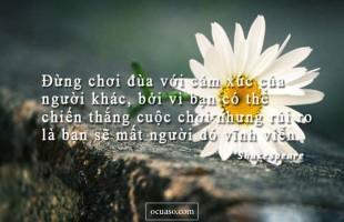 Có những điều trong tiếng Việt chất đầy cảm xúc…